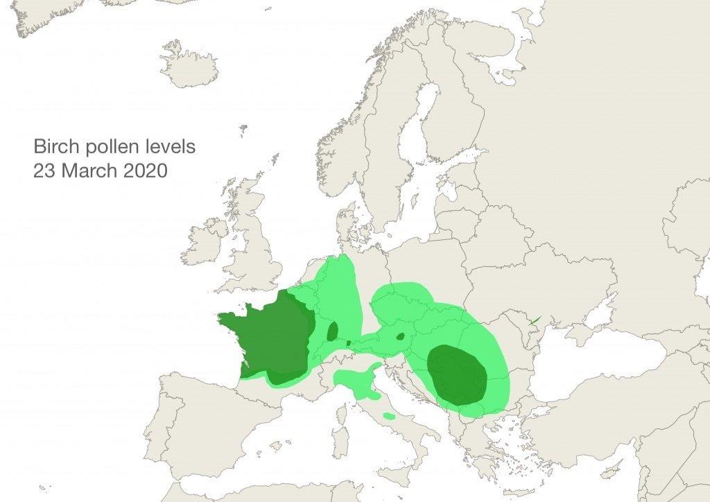 Birch pollen levels 23 March 2020
