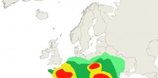 Birch pollen forecast Europe 10 April