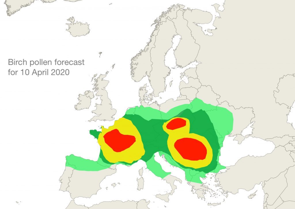 Birch pollen forecast for 10 April 2020