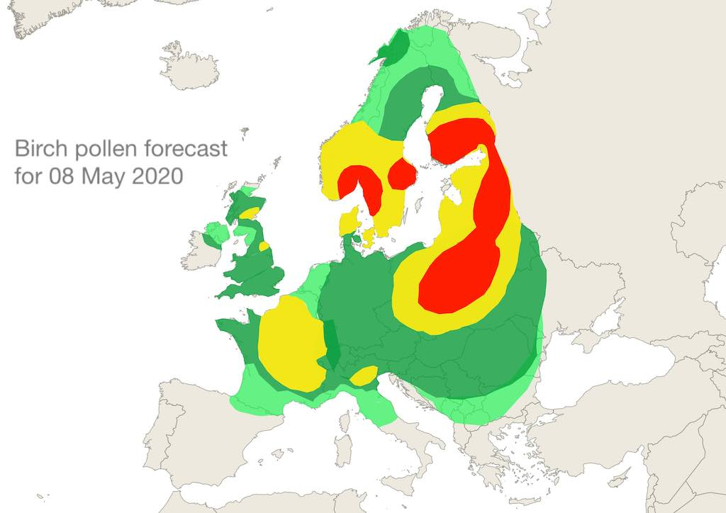 Birch pollen forecast for 08 May 20