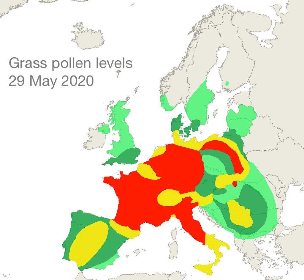 grass pollen 29 May 2020