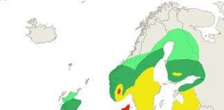 Grass pollen forecast for 25 June